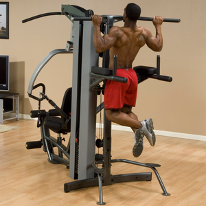 FKR FUSION Vertical Knee-Raise / Dip Station