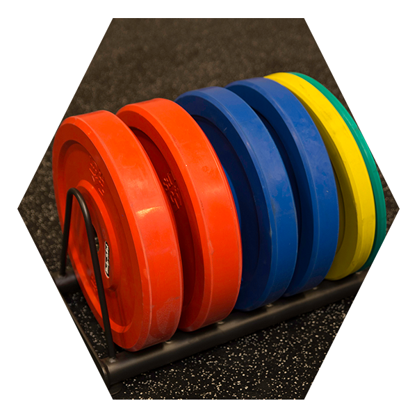 SR-WPS Weight Plate Storage