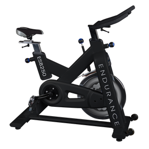 ESB250 - Endurance Exercise Bike