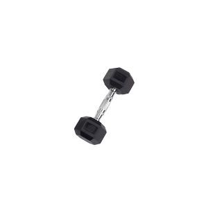 SDR10 Rubber Hex Dumbbells
