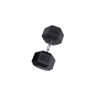 SDR110 Rubber Hex Dumbbells