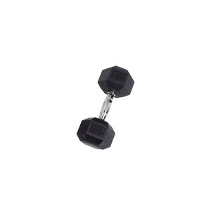 SDR25 Rubber Hex Dumbbells