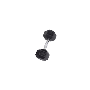 SDR30 Rubber Hex Dumbbells
