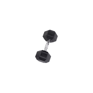 SDR35 Rubber Hex Dumbbells