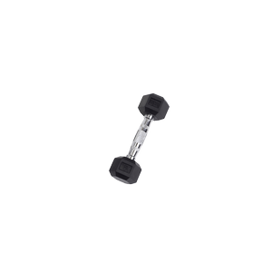 SDR5 Rubber Hex Dumbbells