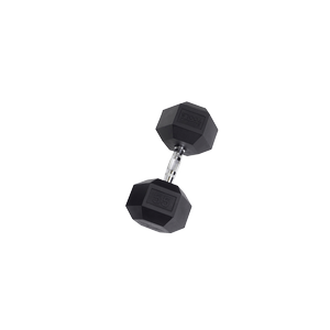 SDR55 Rubber Hex Dumbbells
