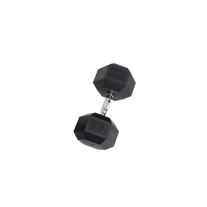SDR70 Rubber Hex Dumbbells